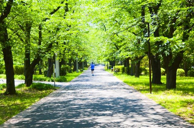 イライラした時の対処法お散歩