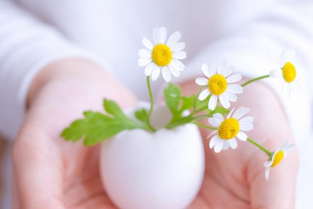 手のひらにそっとお花を乗せるイメージ